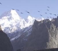 Vídeo CHASING SUMMITS – Voando pelas montanhas mais altas do planeta
